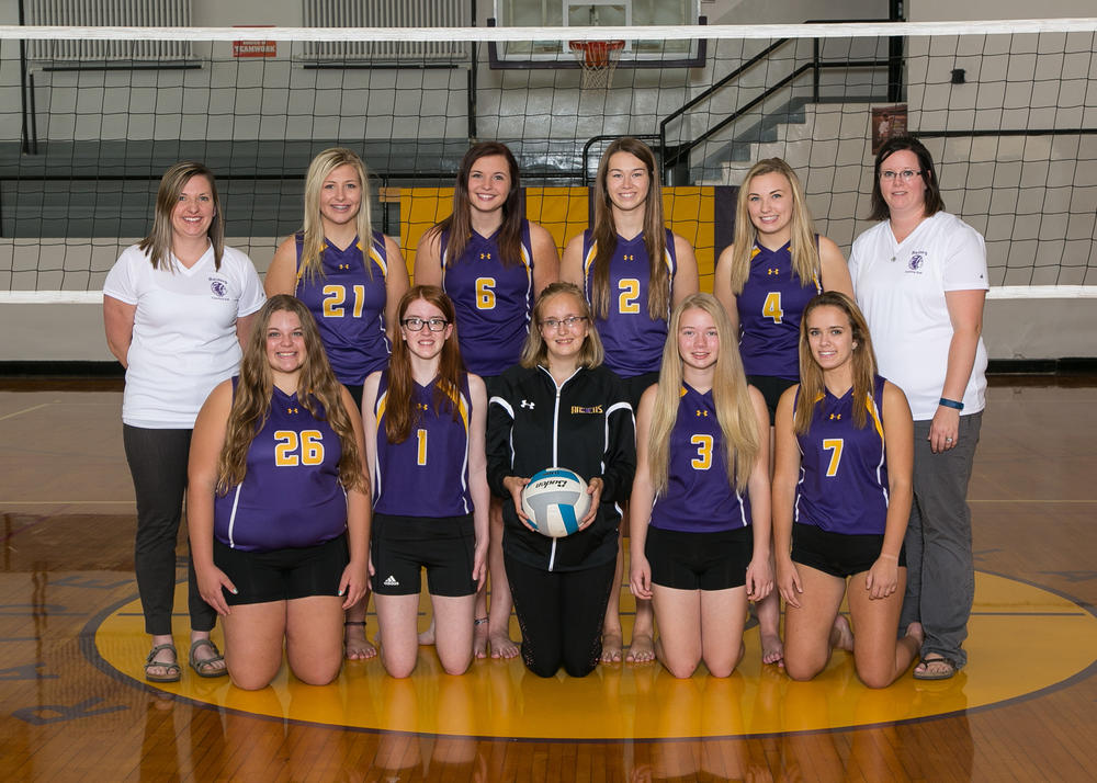 Junior Varsity Volleyball 2017